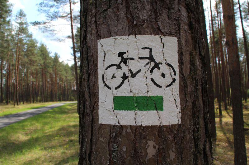 bike_slider_1
